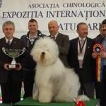 Peste 1.700 de câini din 19 ţări, la International Dog Show